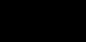 GN logo preta